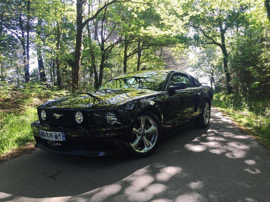 Mustang GT/CS dans les bois